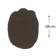 Empreinte d'éléphant (postérieur)