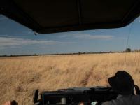 Safari 4x4  Camp Hwange  • Hwange National Park
