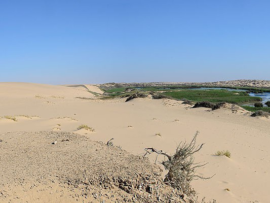 plaines desert hoanib namibie