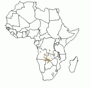 Répartition géographique du cobe de Lechwe en Afrique