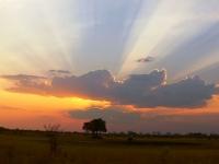 photo  coucher de soleil • Camp Hwange  • Hwange parc national