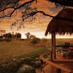 Botswana Mombo Camp